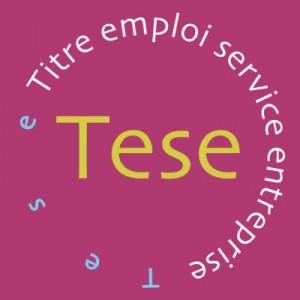 Le Titre emploi service entreprise TESE URSSAF