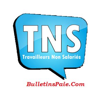 TRAVAILLEURS NON SALARIES [ TNS ] : Assiettes et taux de cotisations 2017