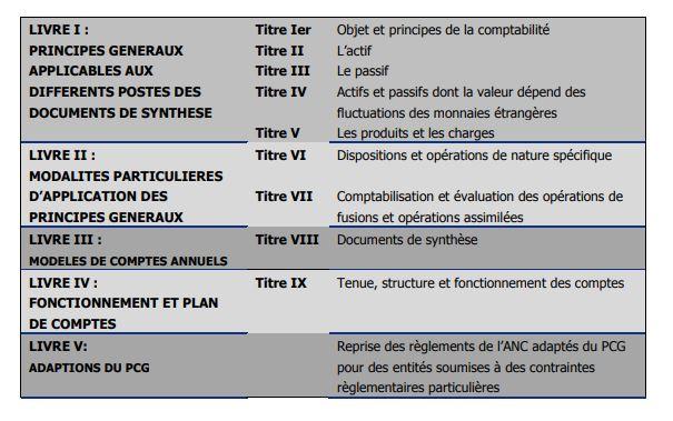 PAS 2019 anc recueil des normes comptables janvier 2019.JPG